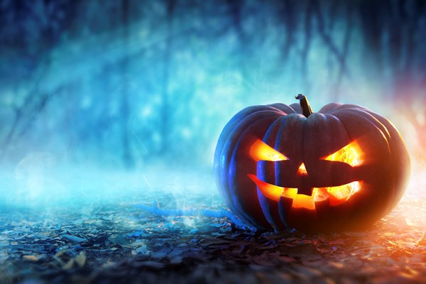 Happy Halloween - Read about the history of Halloween on our blog
